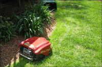 Robotic Lawn mower Edging